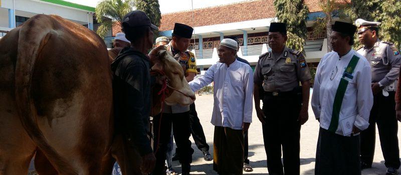 Kapolres Lumajang Serahkan Hewan Kurban Kapolda Jatim ke PP. Miftahul Ulum Banyuputih Kidul